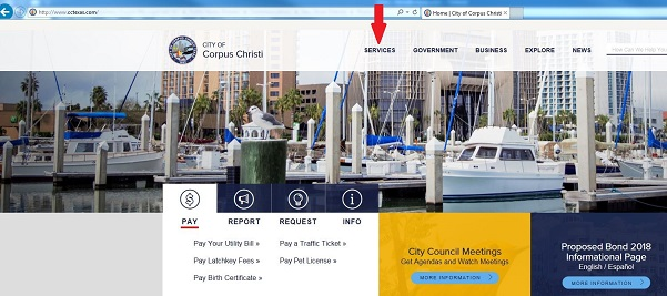 Screen shot of City's Home page.